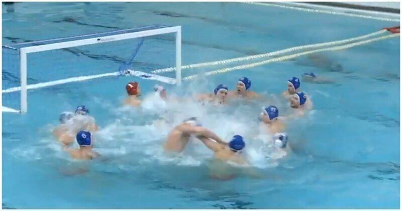 Драка спортсменов во время матча чемпионата России по водному поло попала на видео