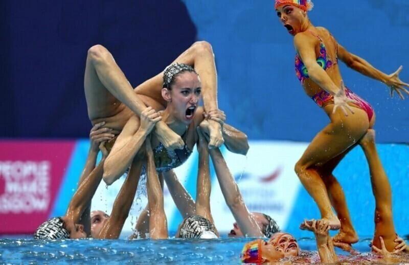 Смешные моменты из мира спорта