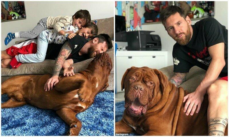 Лео Месси поделился новым домашним фото с сыновьями и псом Халком
