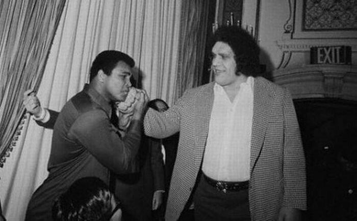 Али и Андре Гигант знаменитости, кино, спорт, фото, фотографии, шоубизнес, эстрада