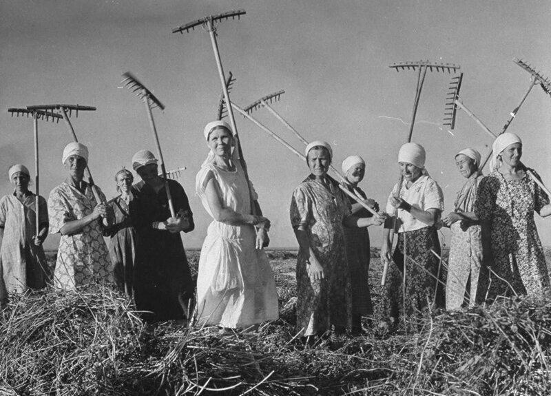 40-е годы СССР, диеты, здоровые, история, красота, спорт