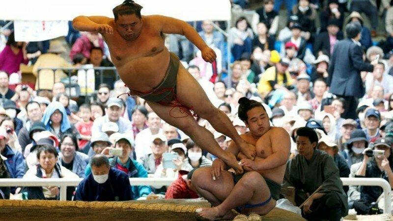 В школах сумо царит лютая дедовщина интересно, спорт, сумо, факты