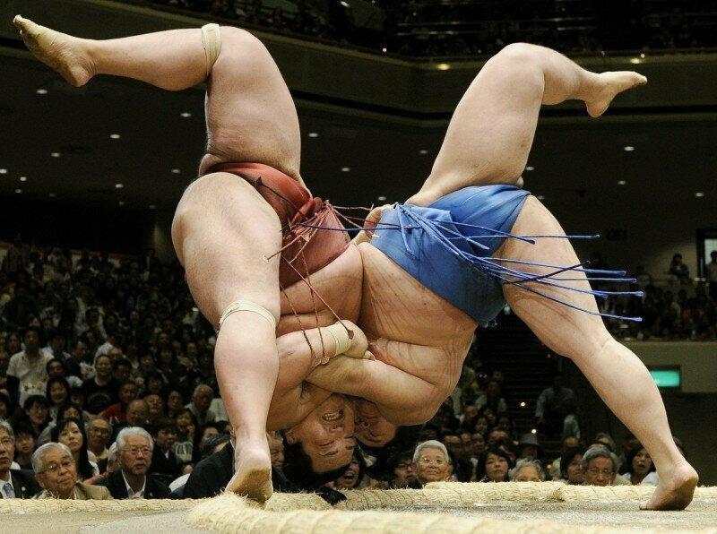 Сумоисты носят боевые имена — иногда довольно забавные интересно, спорт, сумо, факты