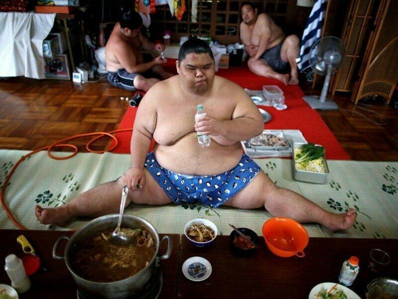 Сумоисты не такие жирные, как кажется интересно, спорт, сумо, факты
