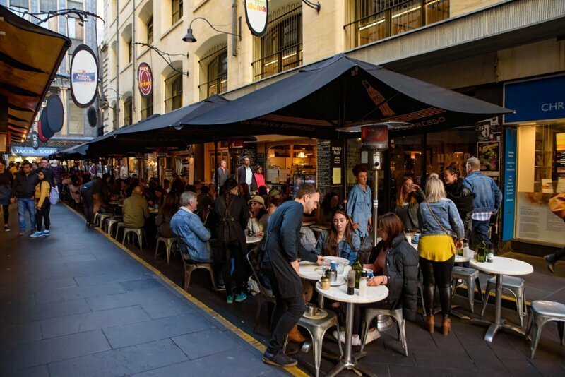 Кафе австралия, медузы, обувь, пластика груди, спорт, факты