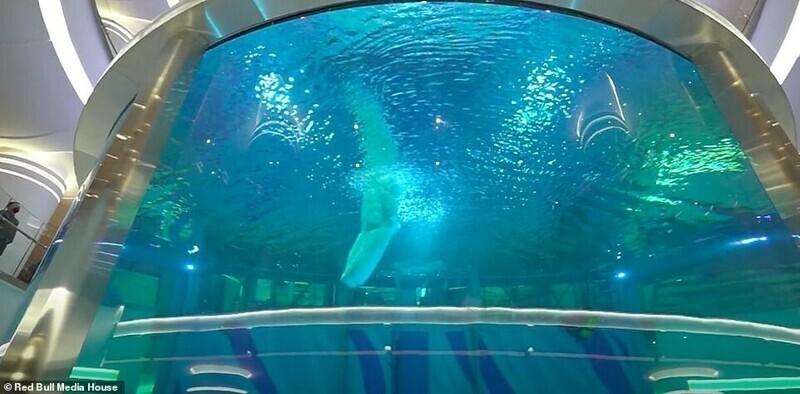 Прыгуны в воду Red Bull покажут мастерство в торговом центре
