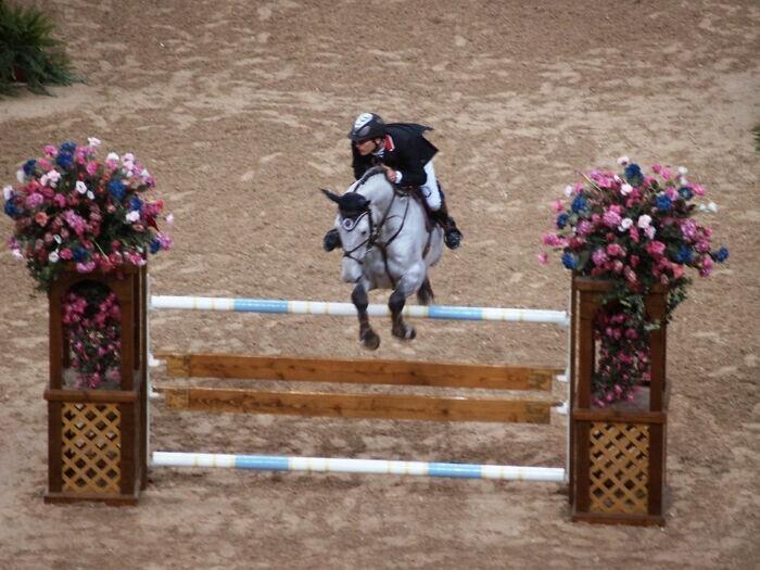 13. Тони Андре Хансен и его конь Камиро